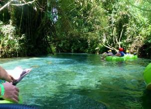 Jamaica River Tubing Adventure Tour